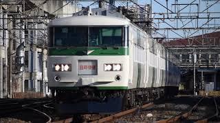 【185系】快速早春成田初詣号 小山駅付近通過