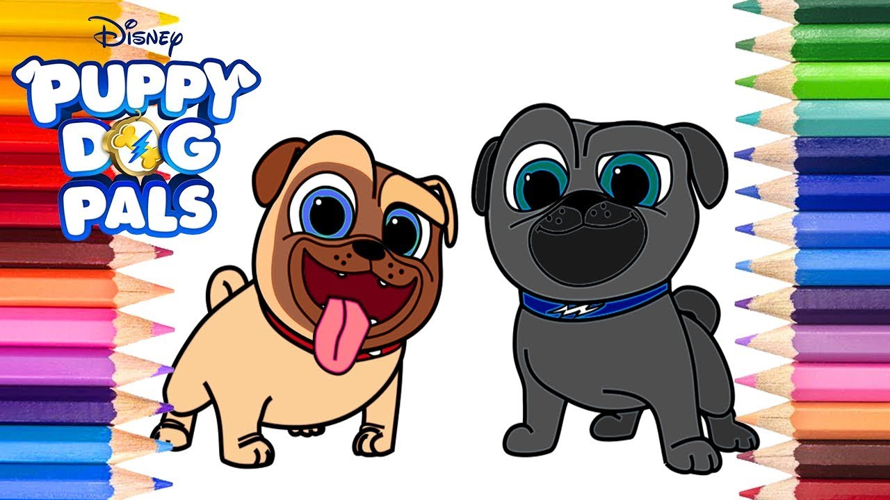puppy dog pals bingo and rolly coloring page  disney