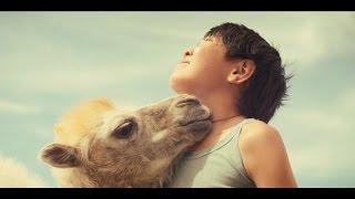 Небесный верблюд (трейлер телеканала Наше HD)