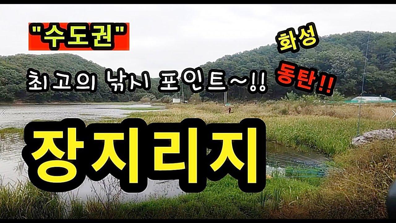 [동탄]_ 장지리지 / 수도권 최고의 낚시 포인트 / 경기도 화성시 장지동 287-5