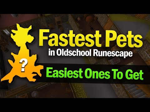 Easiest Pets To Get In OSRS (Fastest Drop Rate)