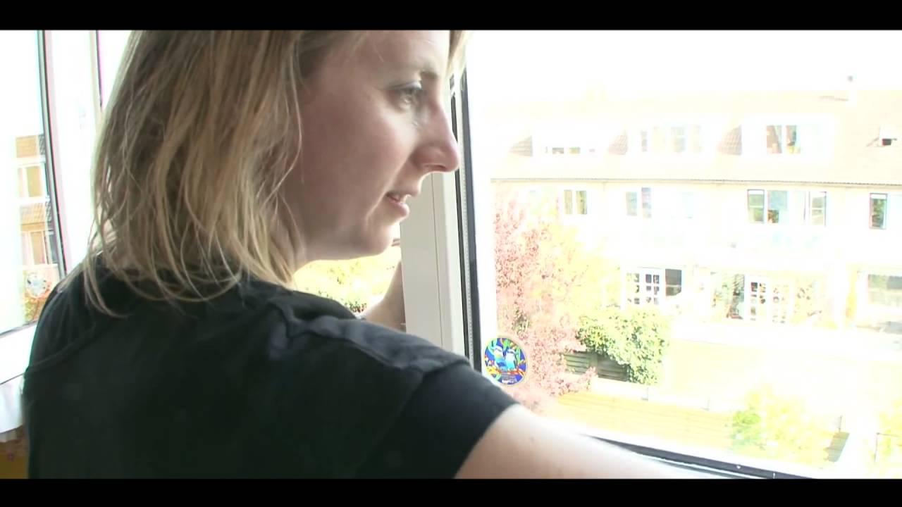 Щетка для мытья окон на магнитах Window Wizard