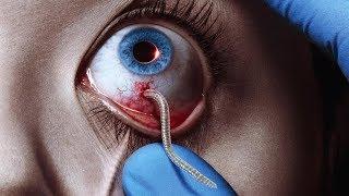 Unfassbar ! Flache Erde & Parasiten ! Ärztin bricht ihr Schweigen !