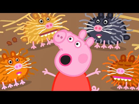 Peppa Pig English Episodes | Season 8 | Compilation 13 | Kids Video