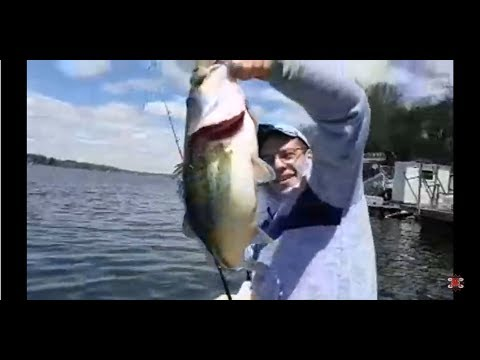 fishn-junk-gone-fishing-with-chad