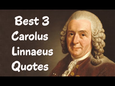 Best 3 Carolus Linnaeus Quotes - The Swedish botanist, physician, & zoologis