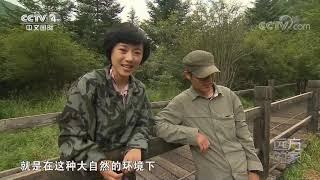 [远方的家]大好河山 大巴山——大九湖湿地公园| CCTV中文国际