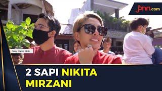 Nikita Mirzani Kurban 2 Ekor Sapi, Namanya Sugiono dan Brownies - JPNN.com