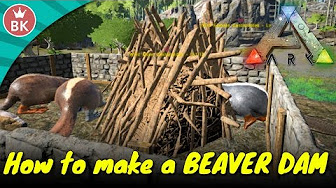 Beaver dams locations tips for looting ark survival evolved ark survival evolved gameplay s4 p10 how to make a beaver dam malvernweather Choice Image