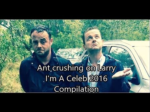 Ant and Dec - Ant crushing on Larry // Compilation