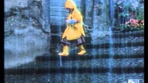 barilla spot gattino 1986