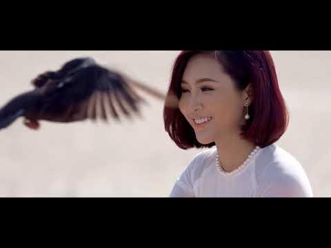 APEC VIET NAM 2017 - Da Nang FantastiCity