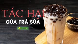 TÁC HẠI của trà sữa và UỐNG TRÀ SỮA như thế nào để AN TOÀN CHO SỨC KHỎE?