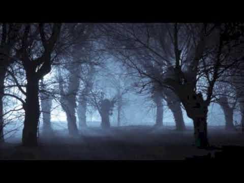 musique-qui-fait-peur-:-la-forêt-de-l'horreur