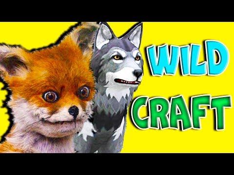 Начал играть в WildCraft Симулятор Жизни Зверей Онлайн