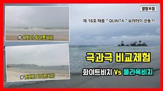 """제 18호 태풍 """" QUINTA """" …"""