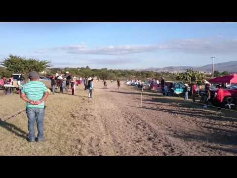 Carrera de caballos amateur en el Capaderillo