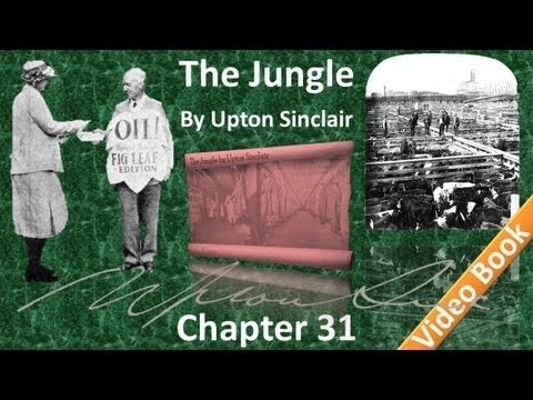 Chapter 31 - The Jungle by Upton Sinclair