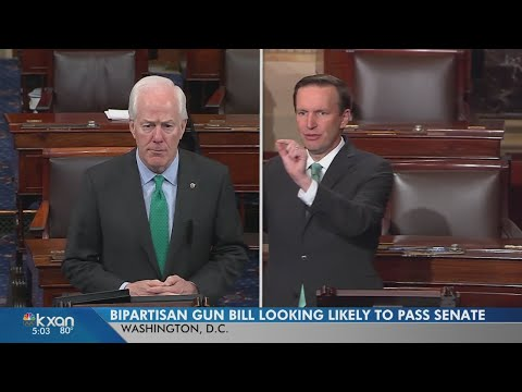 US Senator John Cornyn is leading a bi-partisan effort to close loopholes in the federal background