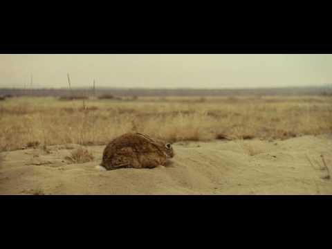 Summer Love (2006) muz: India Czajkowska, reż: P.Uklanski