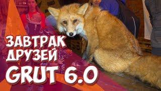 ЗАВТРАК ДРУЗЕЙ GRUT 6.0