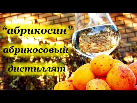 Apricot - Apricot moonshine on bones