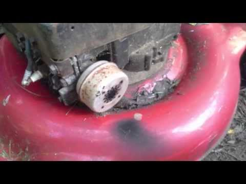 *Briggs and Stratton 3.5 hp Classic Lawn Mower Testimonial