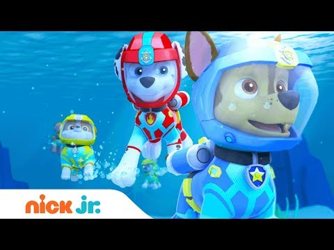 PAW Patrol | 'Sea Patrol: The Next Wave' Official Trailer | Full Episode Sept. 8 on Nickelodeon