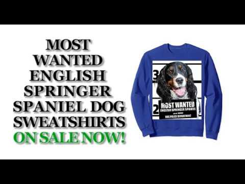 Most Wanted English Springer Funny Dog Sweatshirts - Men's, Women's, Kid's - Black, Blue, Heather
