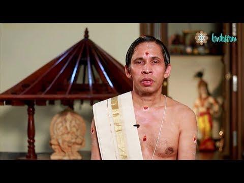 Punartham I November 2017 Nakshatraphalam I Kanippayyur Narayanan Namboodiripad
