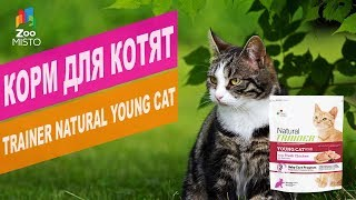 Корм для котят Trainer Natural Young Cat | Обзор Корм для котят Trainer Natural Young Cat