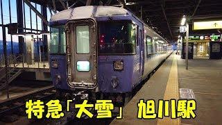 """旭川駅の特急「大雪」 Limited Express """"Taisetsu"""", JR Asahikawa Station (20201.)"""