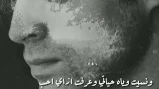 شيماء الشايب   حالات واتساب   واتس اب   حزينه   مجرد ذوق 🎵