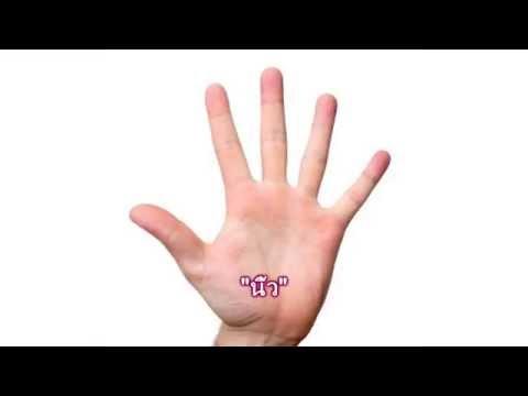 คำลักษณะนามของนิ้ว