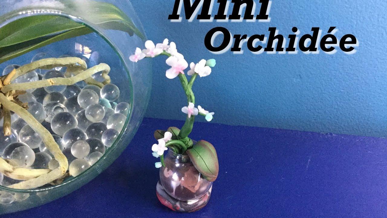 Tuto Mini Orchidee Dans Son Pot En Verre