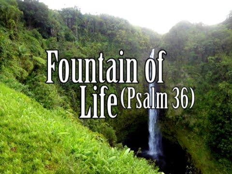 Psalm 36 Einheitsübersetzung