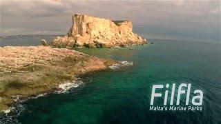 Filfla underwater documentary trailer