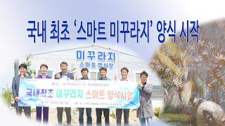 [목포뉴스/신안신문]천사섬미꾸라지(주), 국내 최초 '…