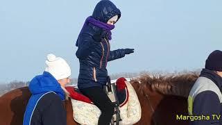 Урок информатики/ конный спорт/ социальный ролик.