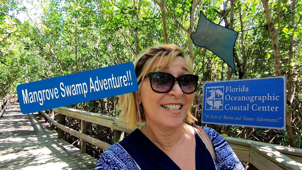 Florida Oceanographic Coastal Center Stuart Florida | Swamp Trail Adventures