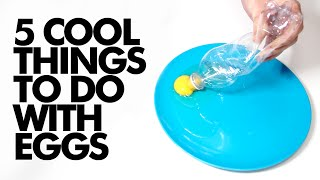 5 COOL THINGS TO DO WITH EGGS