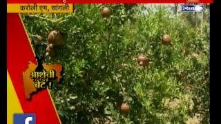 Sangli | Jal Sandharan Work | Made Karol M Village Sujlam Suflam