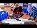 Live Skinless and Boneless Fish Cutting Skills | 2020 Fish Market