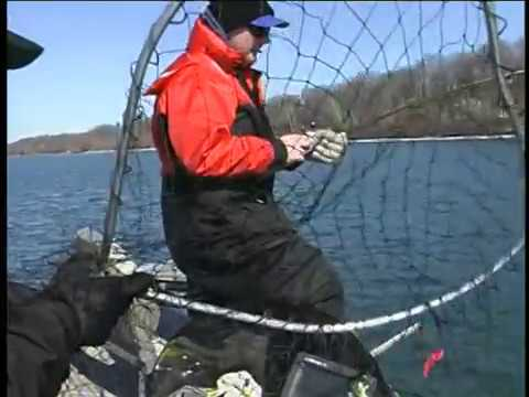 Drift fishing on the lower niagara river with frank for Lower niagara river fishing report