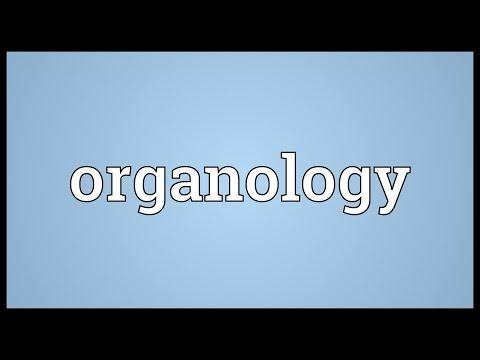 Header of organology