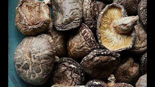 Health Benefits Shiitake Mushroom