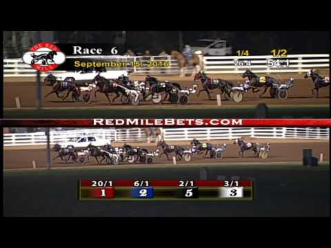 Red Mile Racetrack Race 6 9-15-2016