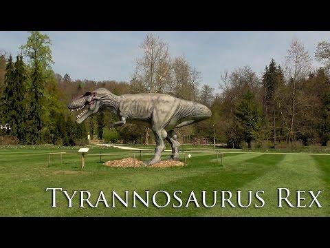 Tyrannosaurus Rex - Volčji Potok - arboretum