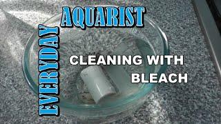 Cleaning Aquarium Filter Parts With Bleach: Kill Algae
