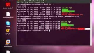 Using the GZIP Command in Ubuntu